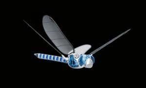 Le robot libellule