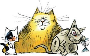 L'animalerie : Une vétérinaire te répond !