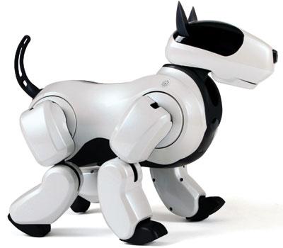 Que penses-tu du chien robot Genibo ?