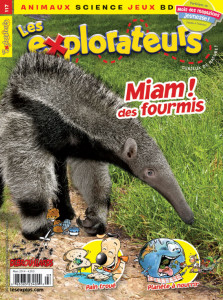 Mars 2014 – Miam! des fourmis