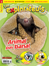 Juin 2014 – Animal pas banal