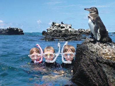 La faune étonnante des îles Galapagos