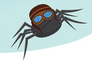 Une araignée planeuse