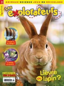 Février 2016 – Lièvre ou lapin ?