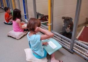 Des enfants font la lecture aux chiens d'un refuge