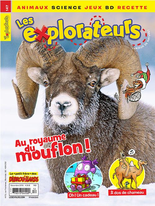 Décembre 2016 : Au royaume du mouflon !