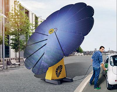 Une fleur solaire