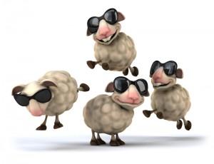 Des moutons en ville !