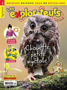 Octobre 2017 – Chouette petite nyctale !