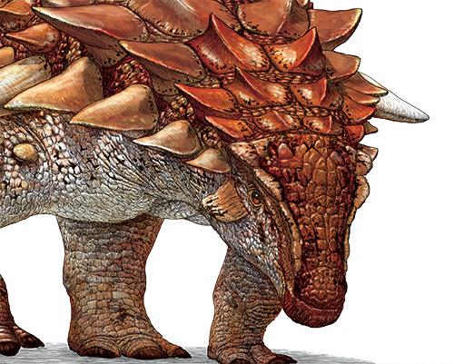 Le fabuleux nodosaure de l'Alberta