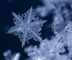 Des flocons de neige aux formes infinies !