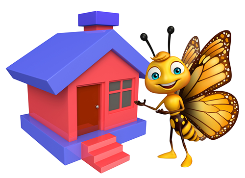 Les papillons ont-ils des maisons ?