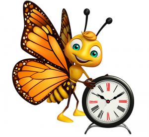 Quel papillon vit le plus longtemps ?