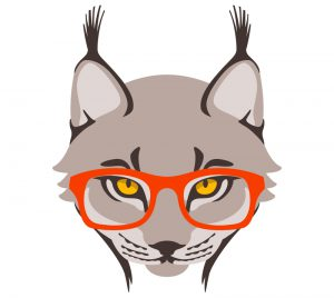 Le lynx en 10 questions