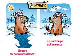 Une marmotte qui prédit la météo ?