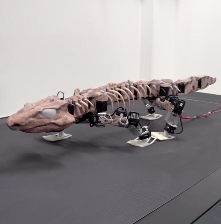 Un robot préhistorique