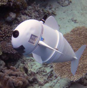 SoFi, le robot poisson