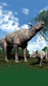 Le plus grand mammifère ayant existé !