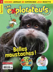 Novembre 2019 – Belles moustaches !
