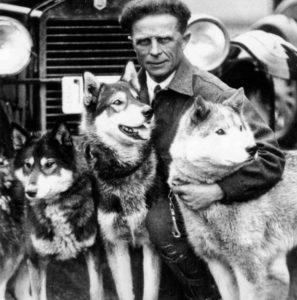 Moss, Balto et Togo, chiens héros