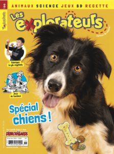 Novembre 2020 – Spécial chiens !