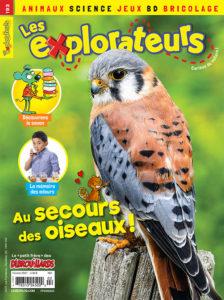 Février 2021 – Au secours des oiseaux!