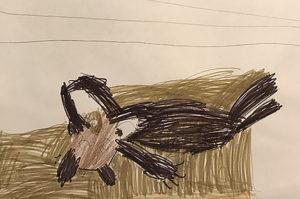 Antoine Harwood, 6 ans