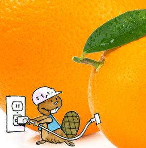 Oranges électriques
