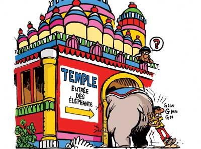 Des éléphants trop gros