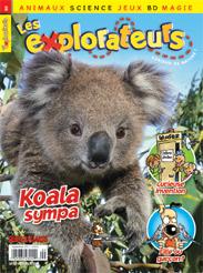 Septembre 2011 – Koala sympa